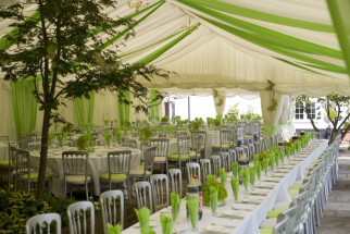 Ivory Pleated Linings with Lime Green Overlays