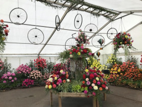 Unlined Marquee For Flower Festival